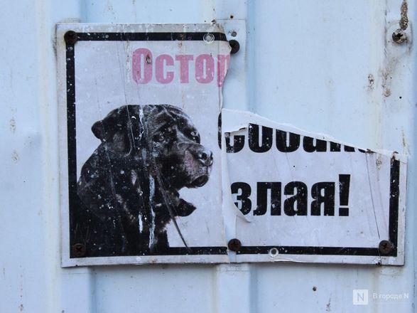 История нижегородского «Дома ужасов»: как автосервис превратился в «логово колдуна» - фото 15