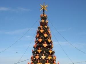 К 10 декабря на площади Минина и Пожарского установят главную городскую елку