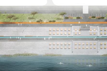 Около ста лежаков установят на Гребном канале