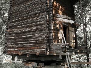 Более трех миллионов рублей потратят на реставрацию мельницы на Щелоковском хуторе