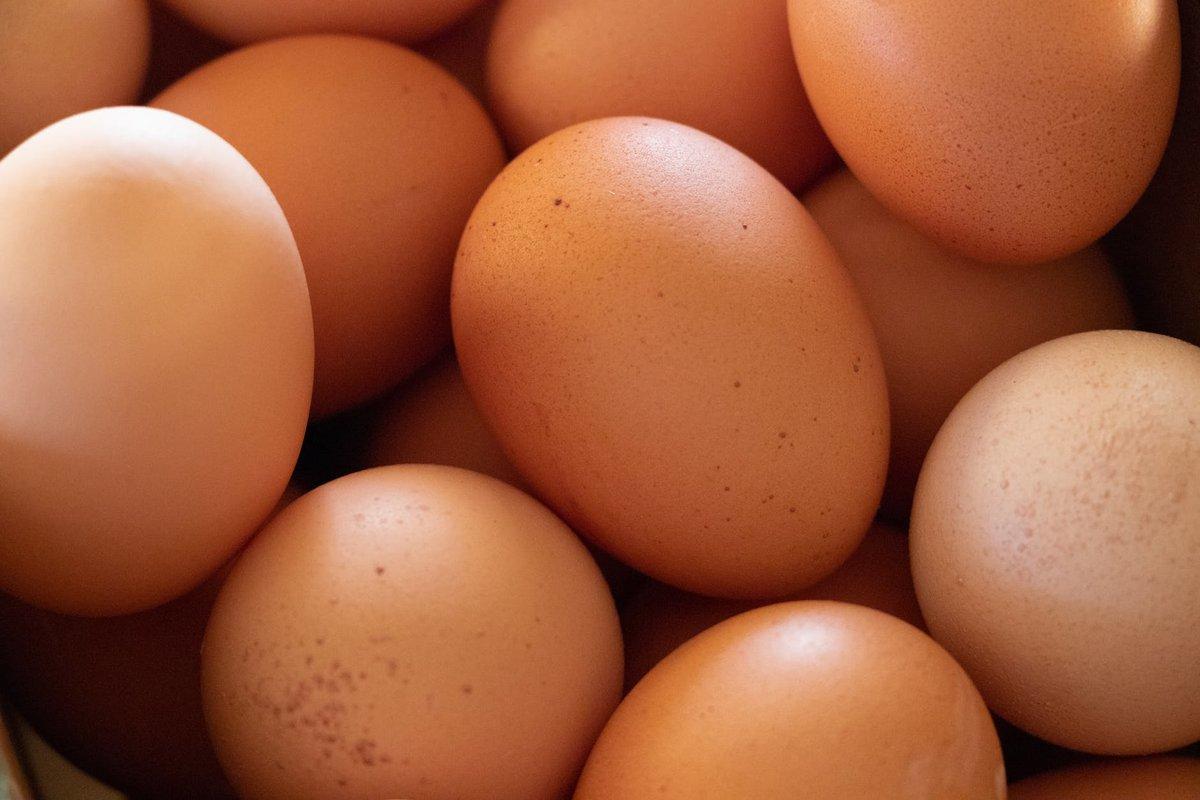 Отличие перепелиных яиц от куриных