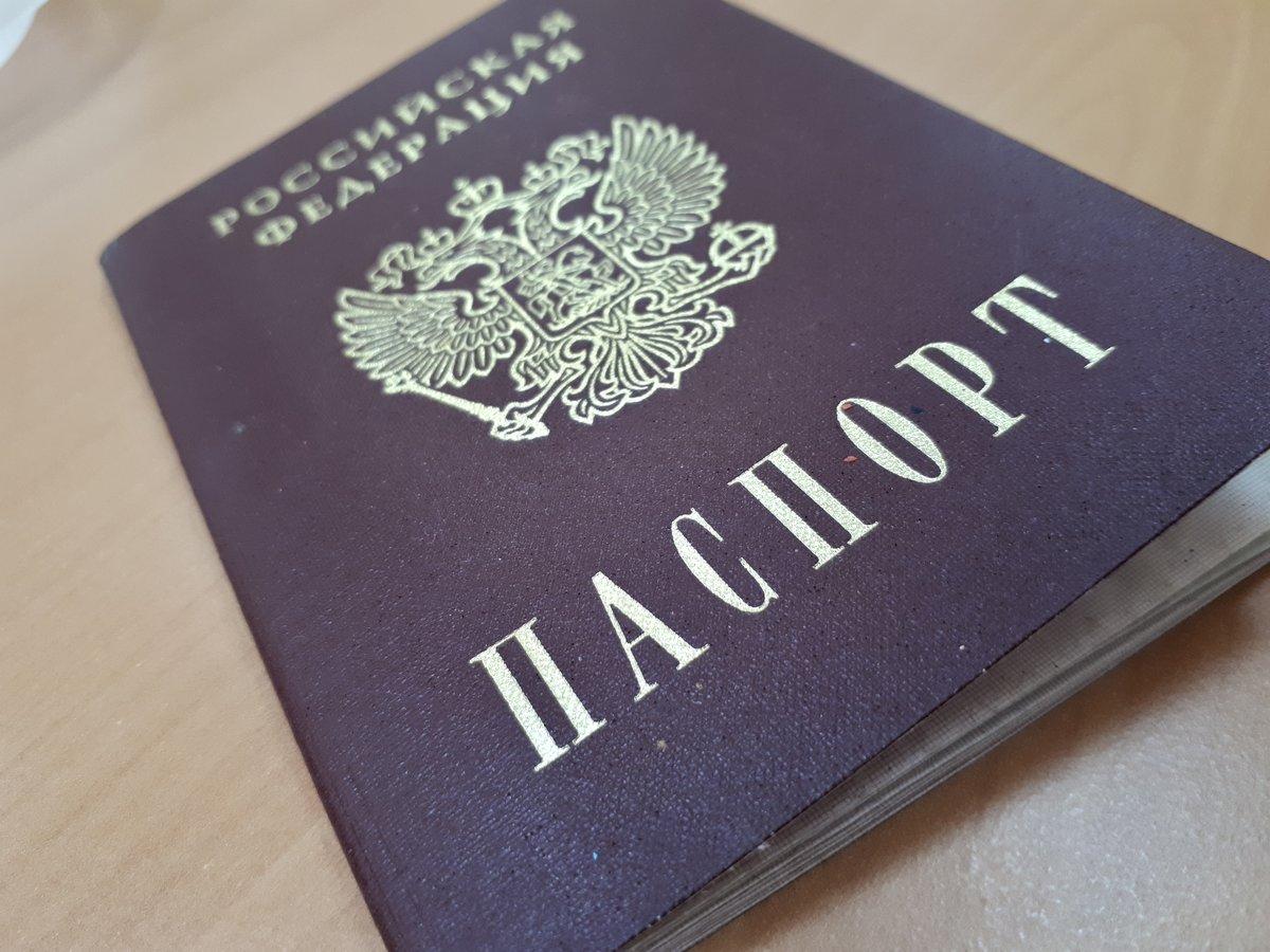 Что делать, если вы потеряли паспорт: пошаговая инструкция  - фото 1