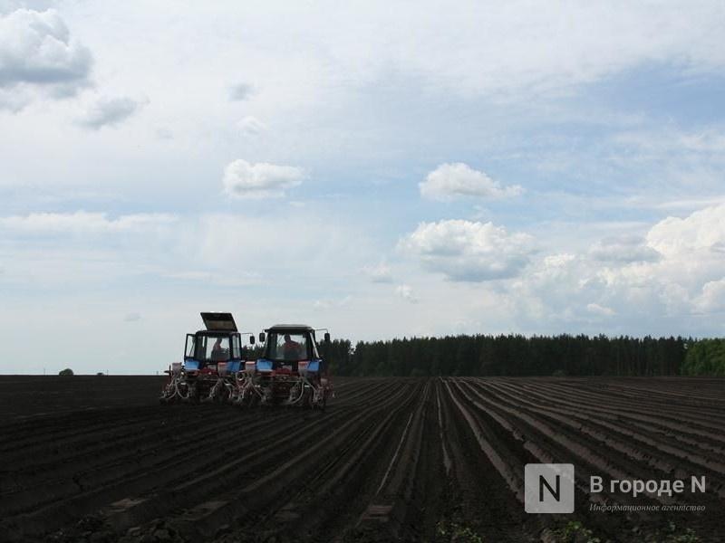 Свыше 20 тысяч га неиспользуемых земель вернут в сельхозоборот в Нижегородской области - фото 1