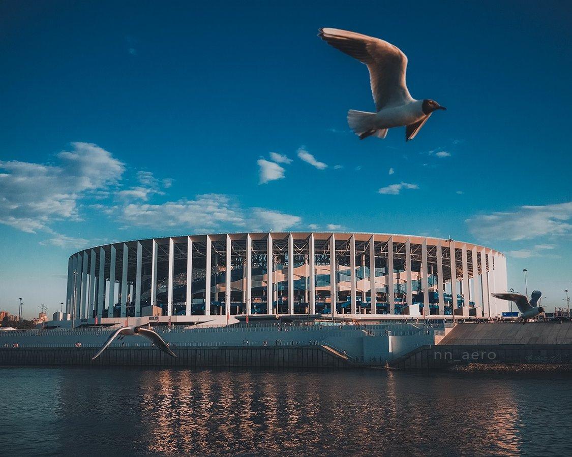 Путин утвердил проведение форума «Россия – спортивная держава» в Нижнем Новгороде - фото 1