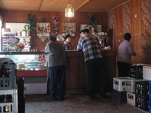 Нижегородцы высказались за сокращение числа коммерческих объектов в Сормовском парке