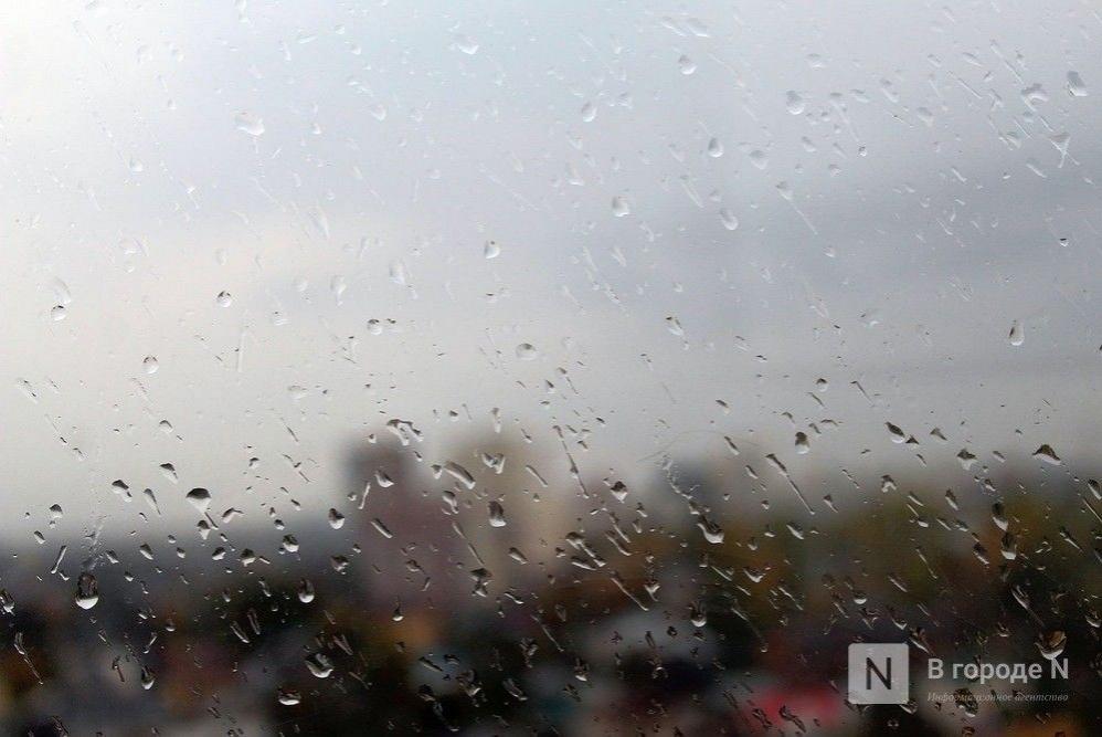 Сильные дожди ожидаются в Нижегородской области - фото 1