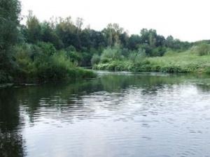 Желание искупаться в речке толкнуло жителя Гагинского района на угон машины