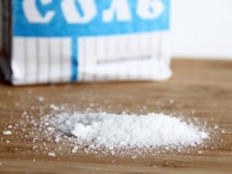 Соль без химических добавок начнут производить в Нижегородской области
